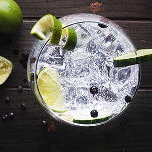 Best Gin Bars in Leeds